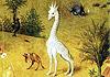 cardini_giraffa_00