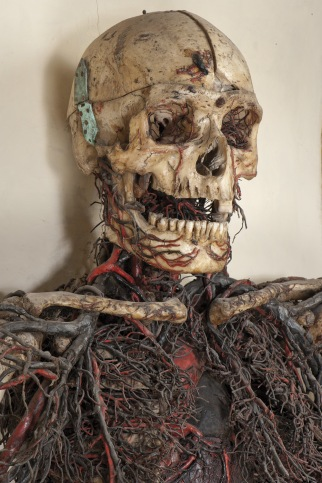 macchine_anatomiche_2